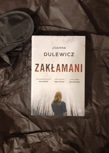 DulewiczZaklamani3